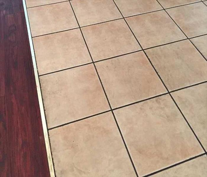 Grout-B-Gone Before